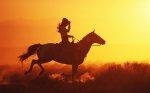 jeździec na tle zachodzącego słońca